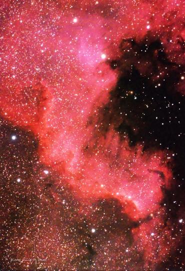 North America Nebula (part) in Cygnus, AKA