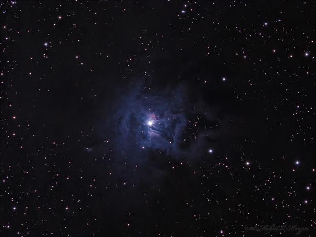 The Iris Nebula NGC 7023 reflection nebula in  Cepheus