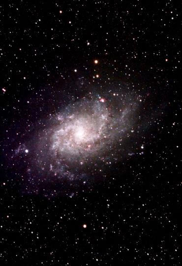 The Whirlpool galaxy M33 in Triangulum