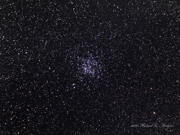 The Wild Duck Cluster