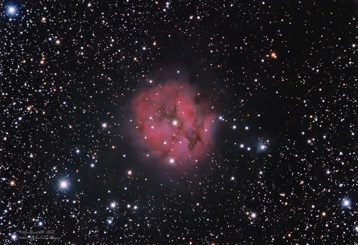 The Cocoon Nebula in Cygnus