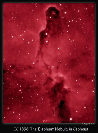The Elephant Trunk Nebula in Cepheus
