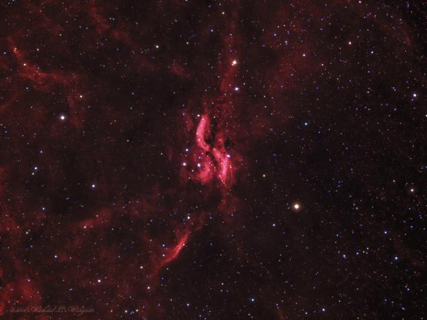 The Propeller Nebula in Cygnus