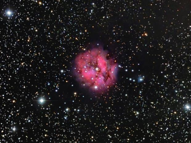 The Coccoon Nebula