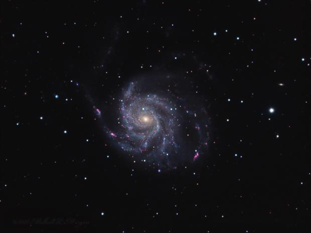 M101 Revisited