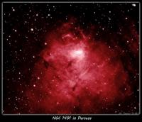 NGC 1491 is an emission nebula with an 11th mag. star at it's center. The image was taken 11-18-11 from Nazareth, PA with a Megrez 90mm APO and Atik 16C OSC CCD using a Ha filter mounted on a Losmandy GM8. Nebulosity capture/PHD guiding. 13 x 10min subs processed in PS CS2 and Carboni Actions. False color Ha.