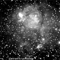 ngc896 taken on 11/12/2010 from my backyard.  A 10\