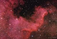Part of the North America nebula in Cygnus,