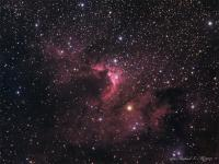 The Cave nebula and surrounding nebulosity it Cepheus