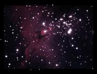 Just the head of the Eagle popularized by the 1995 Hubble picture \'The Pillars of Creation\'. Orion Starshoot on 8\