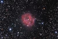 The Cocoon Nebula, IC5146, in Cygnus, imaged from PA & NJ on various dates. This is a collaborative effort using data gathered by Dave Moll and Mike Morgan. The Moll data is from a Pulpit Rock session on 9/17&18/2015 using an Astro-Tech AT8RC scope and SBIG 8300C camera; 6 hours, 10 minutes (37X10) exposure. Morgan data parameters are unavailable.