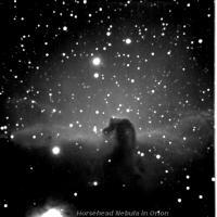 IC434 or Horsehead nebula.aken on 11/11/2010 from my backyard. A 10\