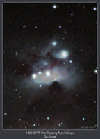 A reflection nebula NE of the Great Orion Nebula. Taken 9-20-09 from Pulpit Rock just before dawn. 5x5min exposures. Captured with Nebulosity, guided with PHD and post processed in PhotoShop CS2 + Noel Carboni's Astronomy Actions. WO 90mm Megrez APO and Atik 16C one-shot color CCD, Losmandy GM-8 mount.